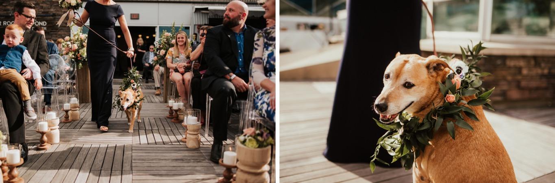 38_The Penthouse - Pat Cori Photography - Virginia Wedding Photographer-82_The Penthouse - Pat Cori Photography - Virginia Wedding Photographer-81_thepenthouse_Ceremony_PatCoriPhotography_roanoke_rooftop_Wedding.jpg
