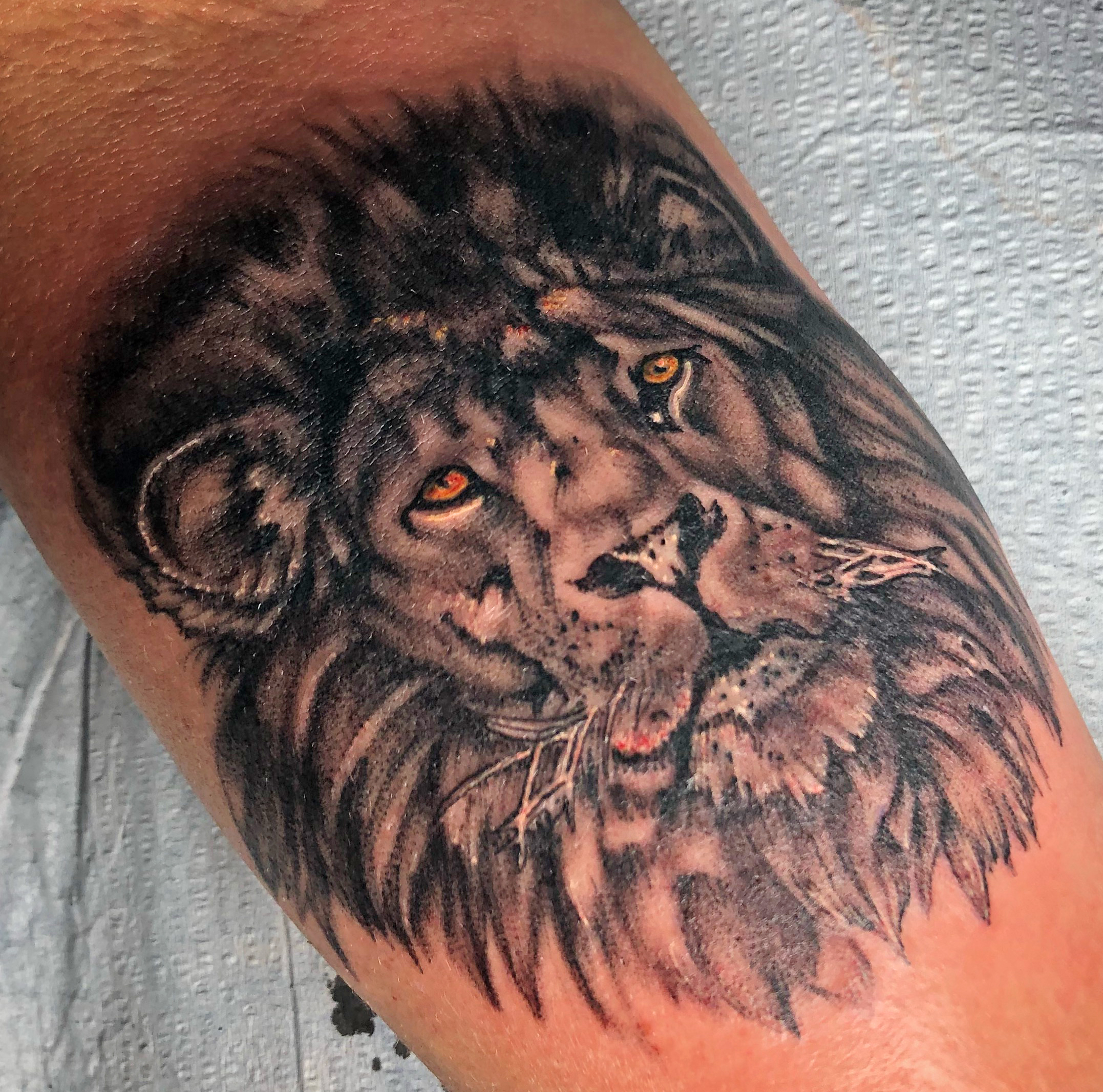 Ryan Boomhower lion tattoo 300dpi.jpg