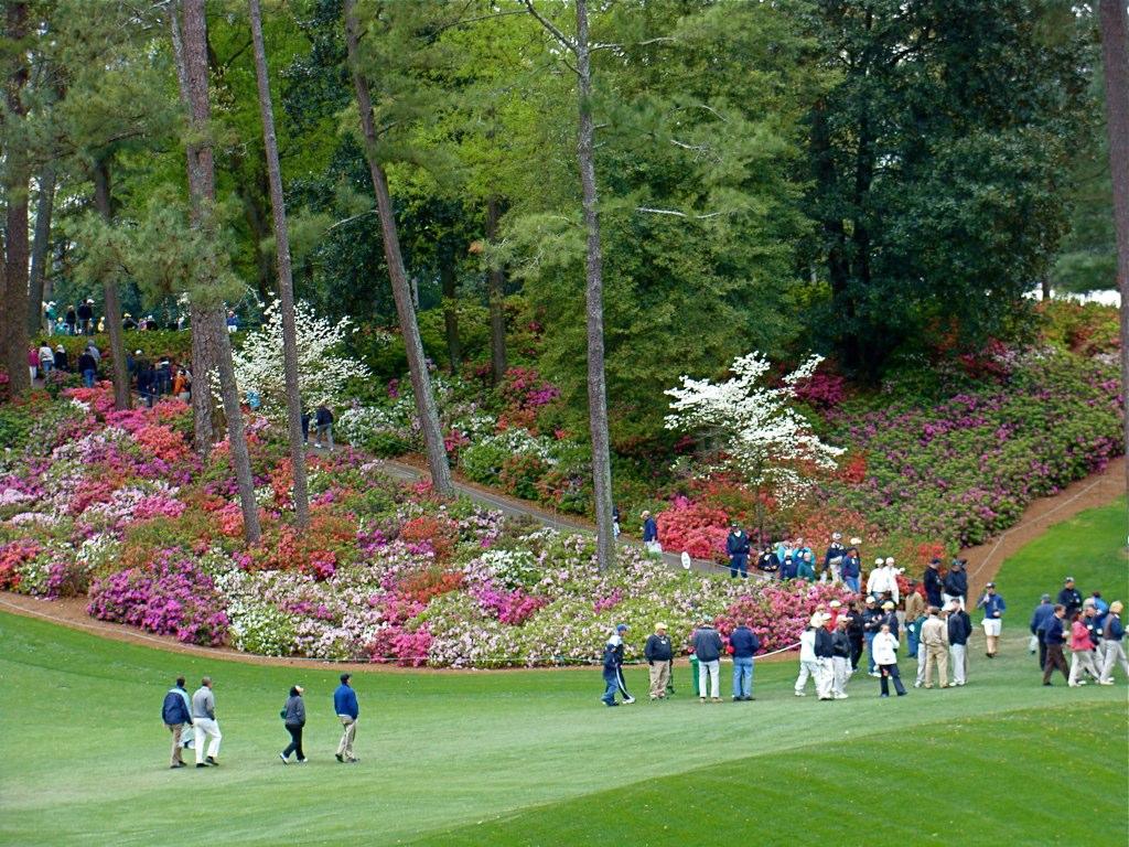 Agusta Golf Course.jpg