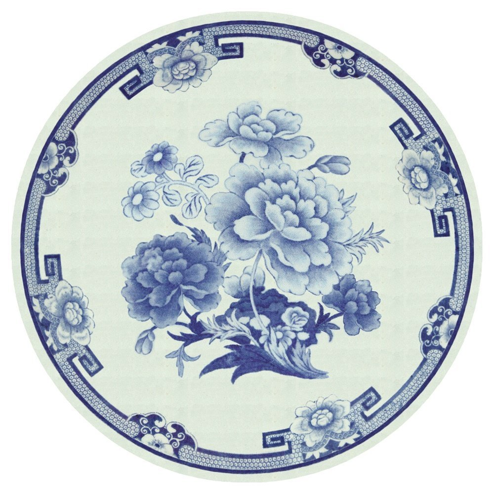 blue and white plastic plate.jpg