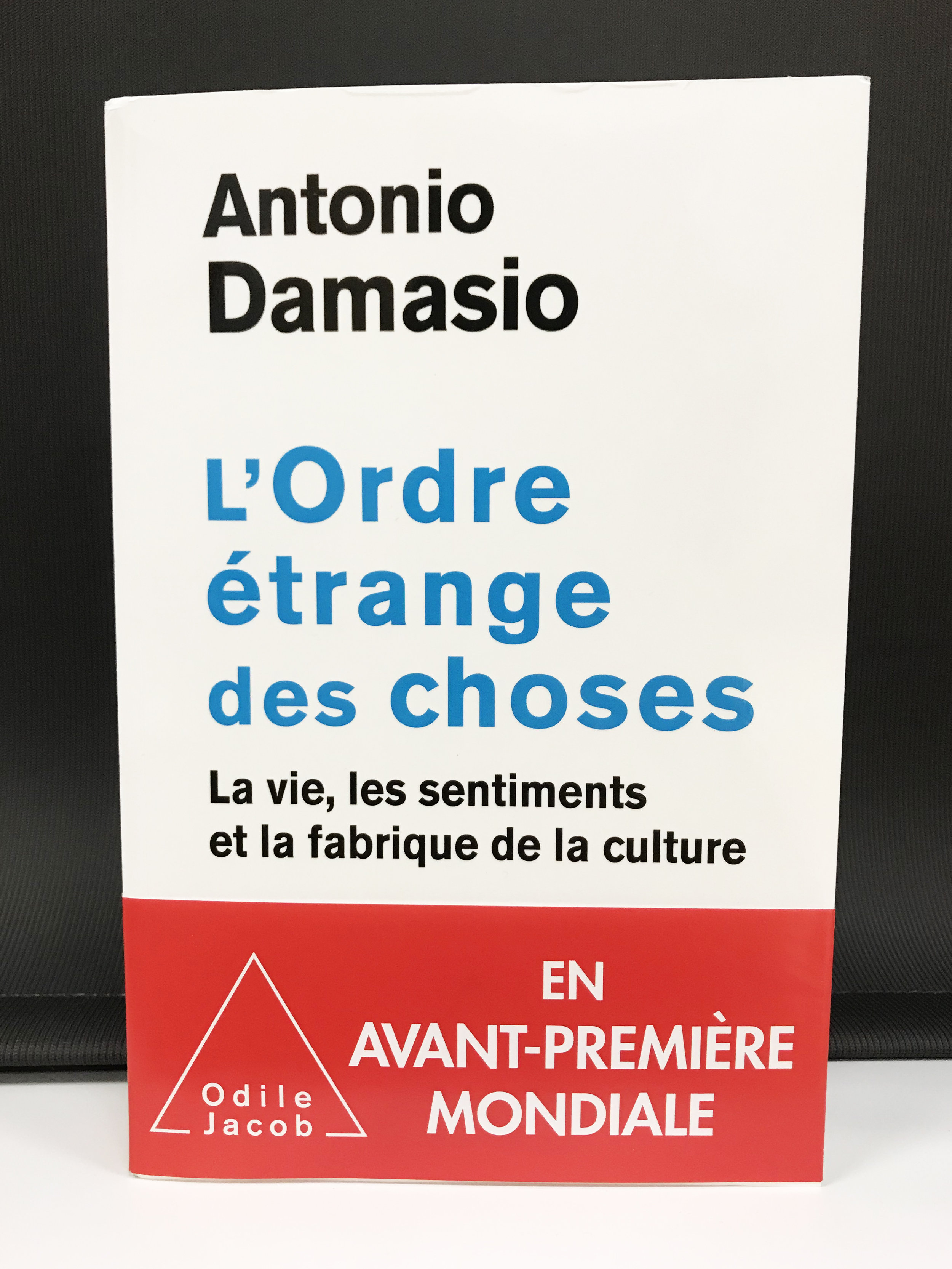 French translation published in November 2017.