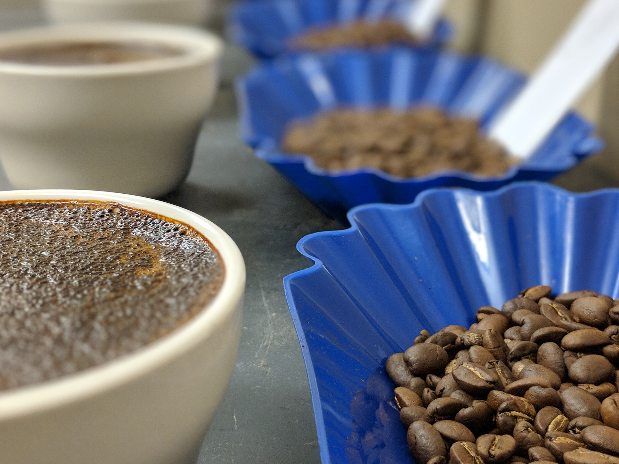 """Cupping & Matching - When you're switching from your current roaster to Copper Moon, we understand the importance of a smooth transition. Our professional team of coffee tasters will cup and match your coffees perfectly.Once your coffees have been matched, we """"lock-in"""" your formula and it won't change. You'll get consistent coffee on every order."""