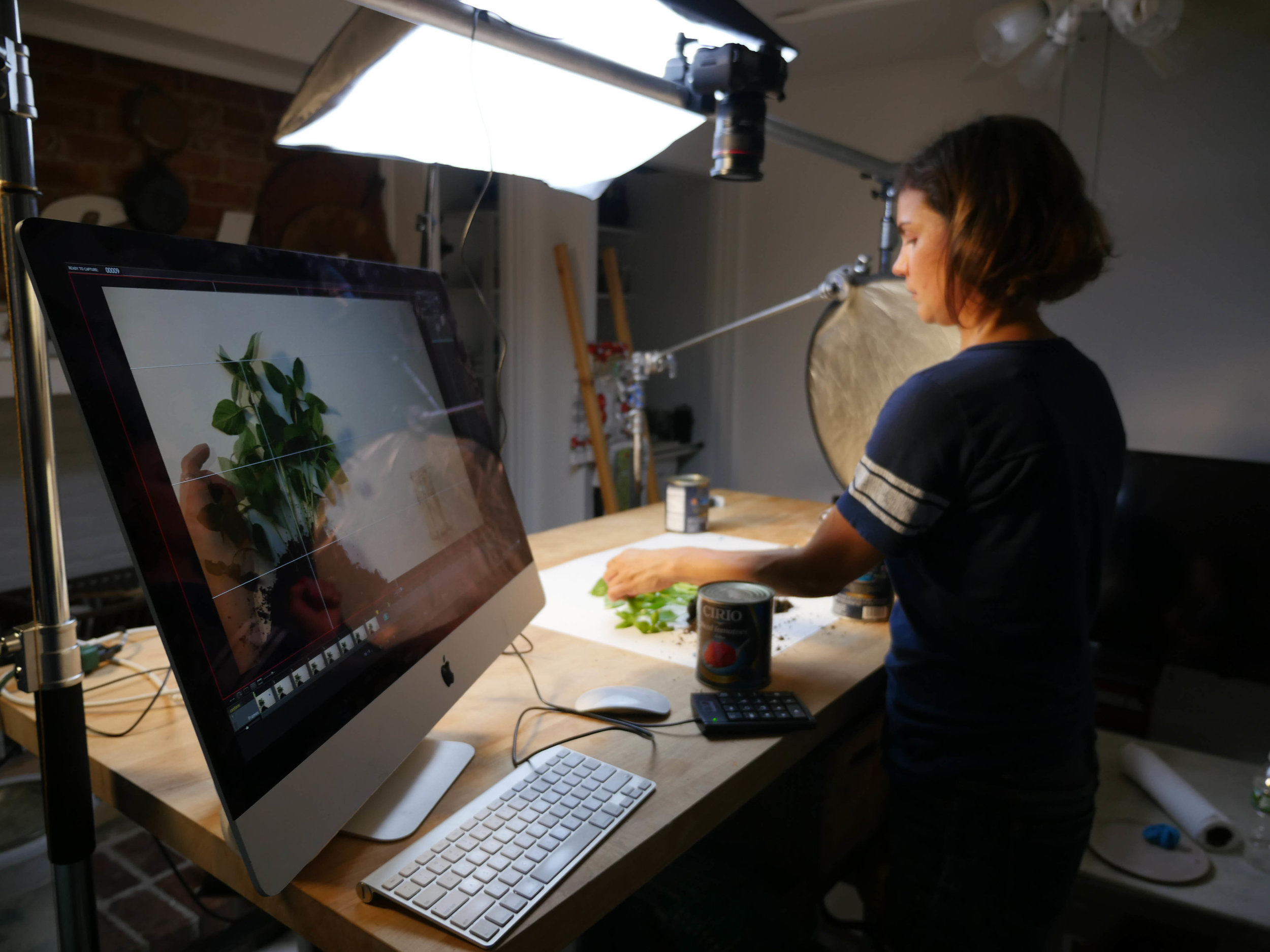 Me creating some stop motion animation magic with a basil plant in my kitchen.
