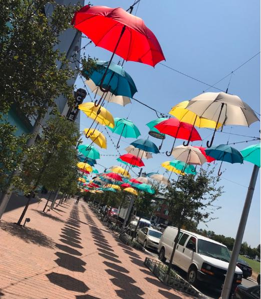 umbrellas 2.png