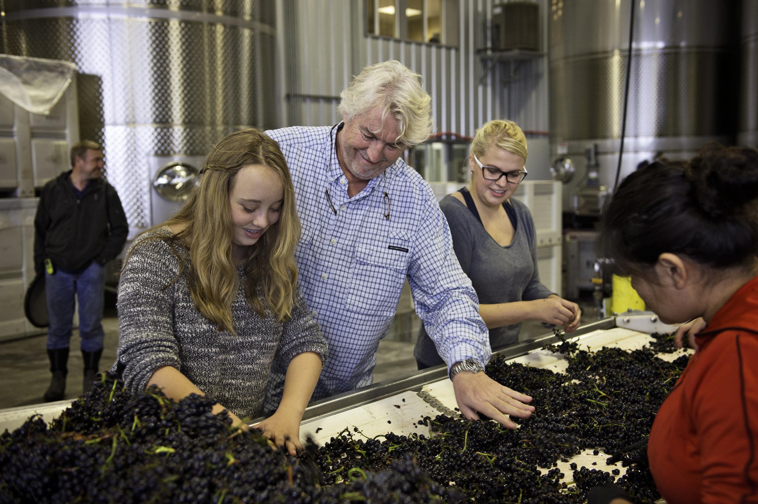 Laurent Montalieu and daughter, Soléna, sorting grapes.jpg