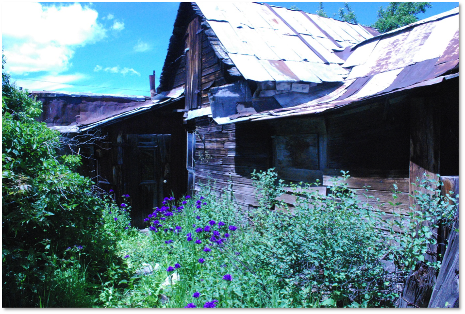 "The ""Main Cabin"" at the Moon Randolph Homestead."