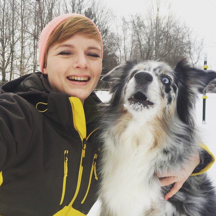 My best friend Brea, my Australian Shepherd.