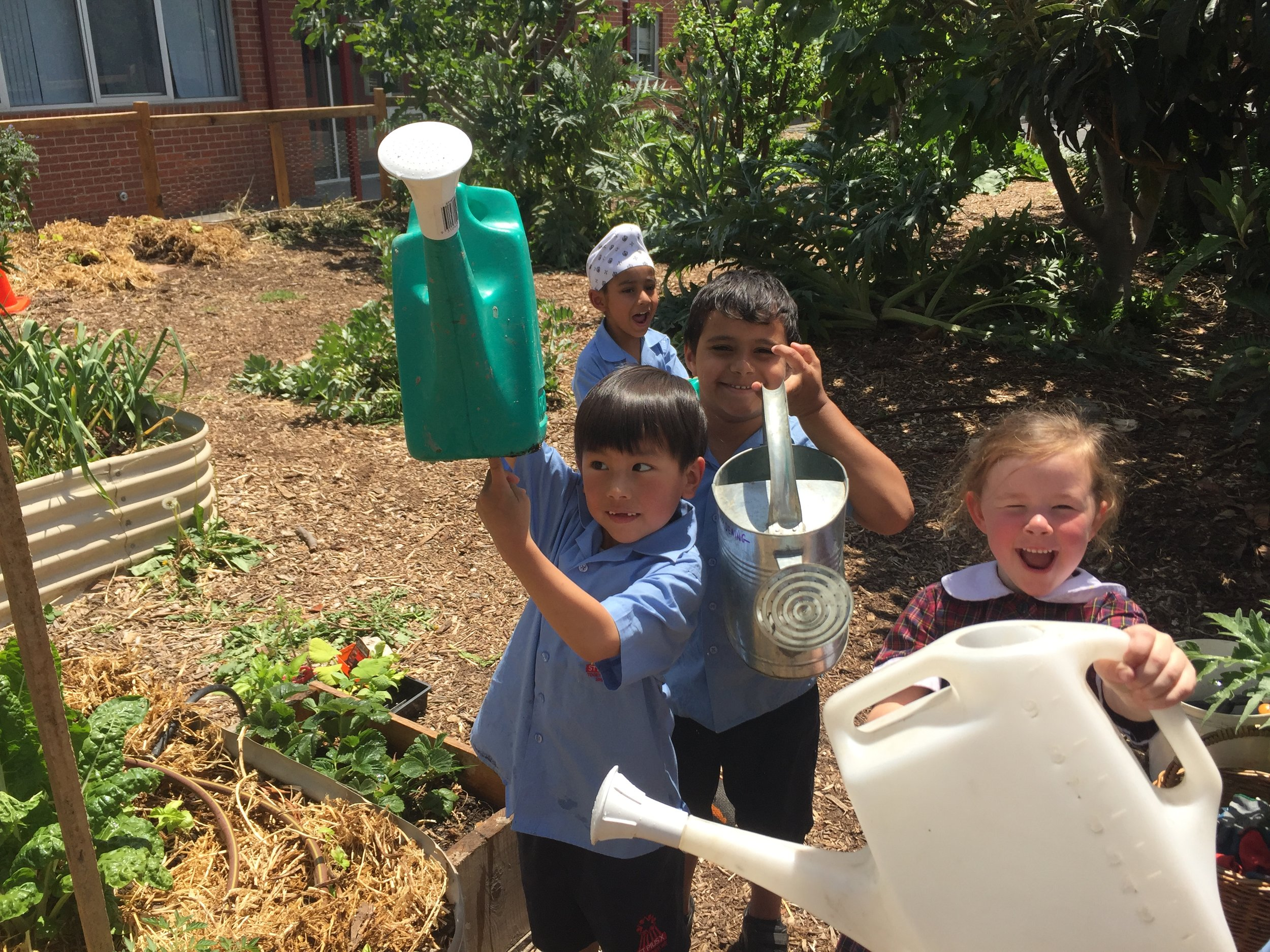 Edible Gardens - The school food garden is a living laboratory where we discover and explore the processes on which we, and all life on Earth, depend. Gardening and cooking provide opportunities for experience and exploration, but also for the inclusion of science into fun, everyday activities.