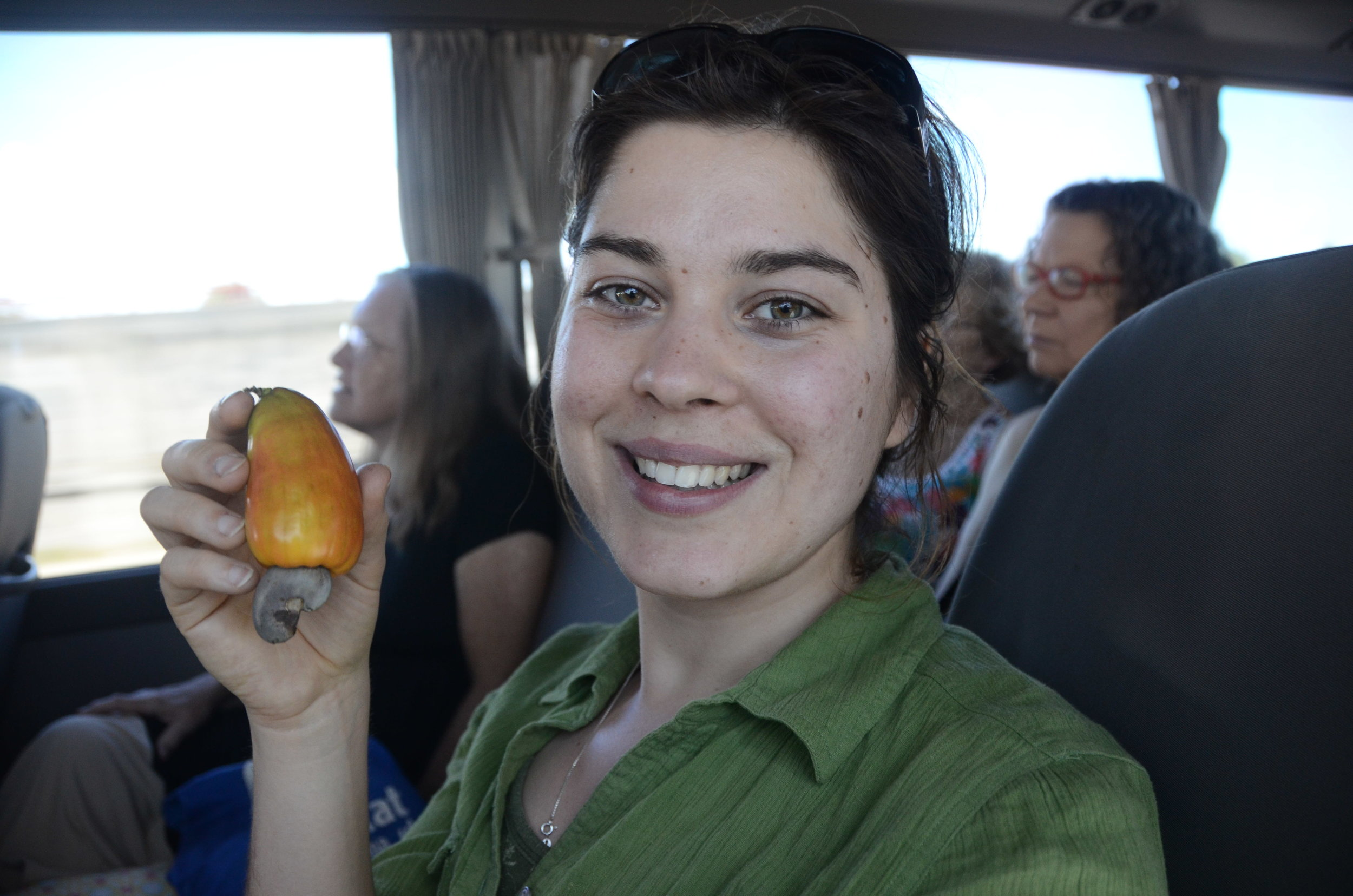 "On the way to the volcano we came across a cashew tree. This is Rachel, she's showing off how cashews grow-on the outside of the plant-the black thing at the bottom is the still ""Green"" cashew. But I guess it's almost ripe."