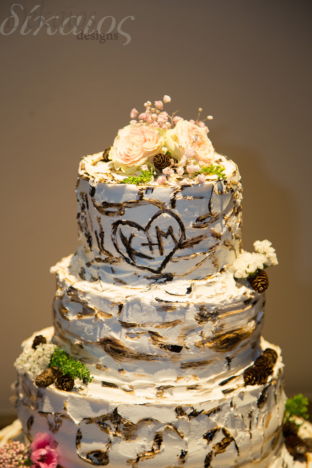 A friend of the bride made this beautiful birch tree cake with their initials carved in.