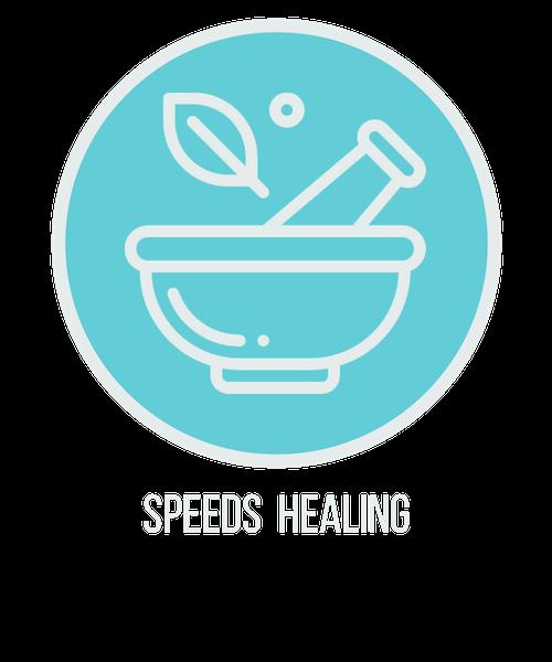 speeds healing icon.png