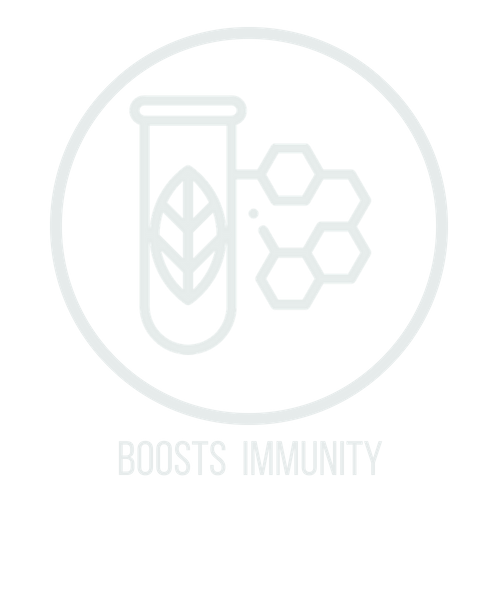 boosts immunity icon.png