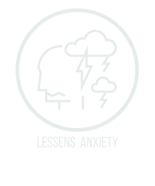 lessens anxiety icon.png