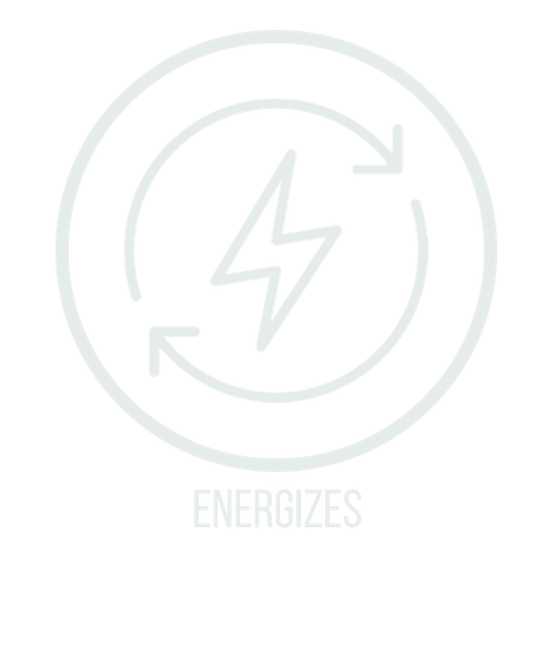 energizes icon.png