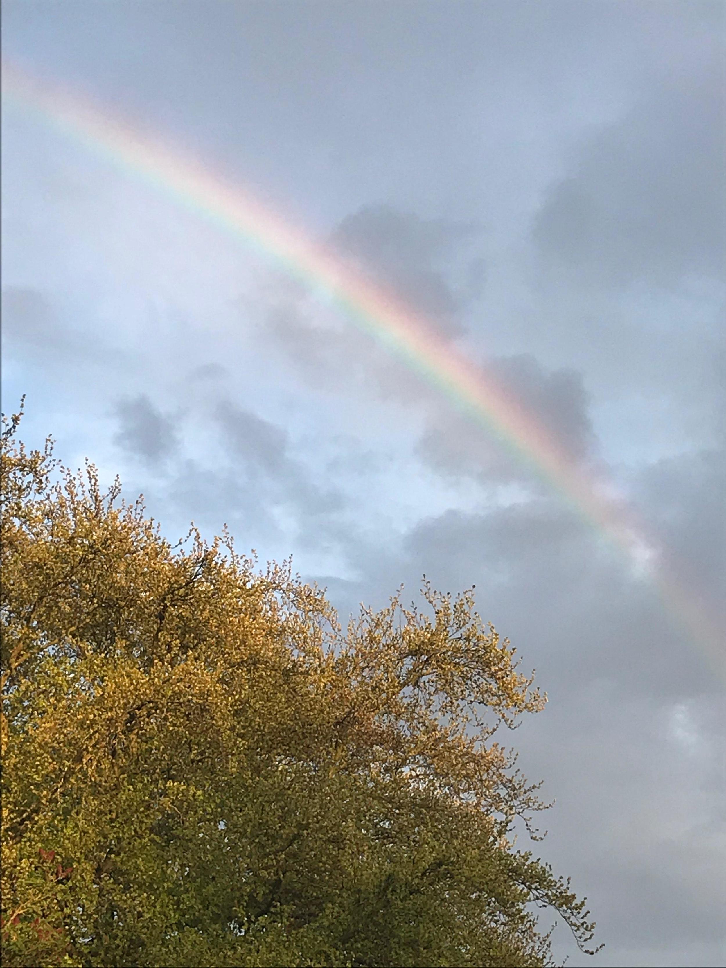 rainbow at my house.jpg