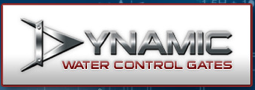 dynamic-new-001.png