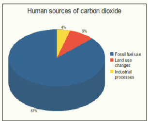 Source: Le Quéré, C. et al. (2013). The global carbon budget 1959-2011. (1)
