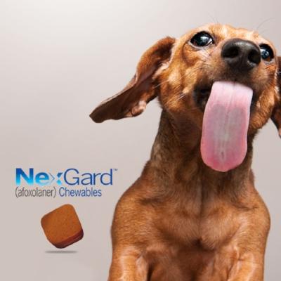 Free Nexgard Trial Dose - Your first dose of Nexgard is FREE!