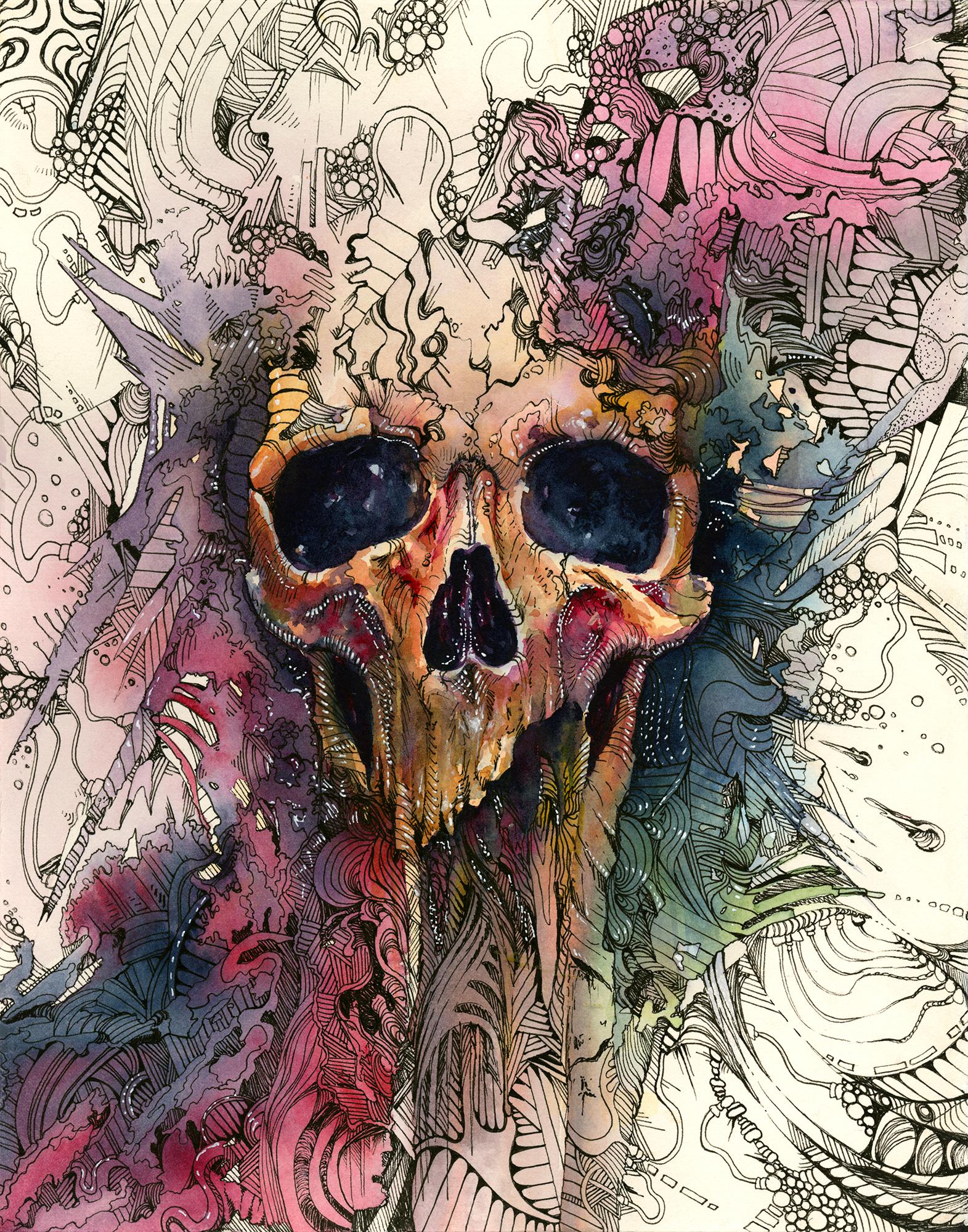 watercolor_skull.jpg