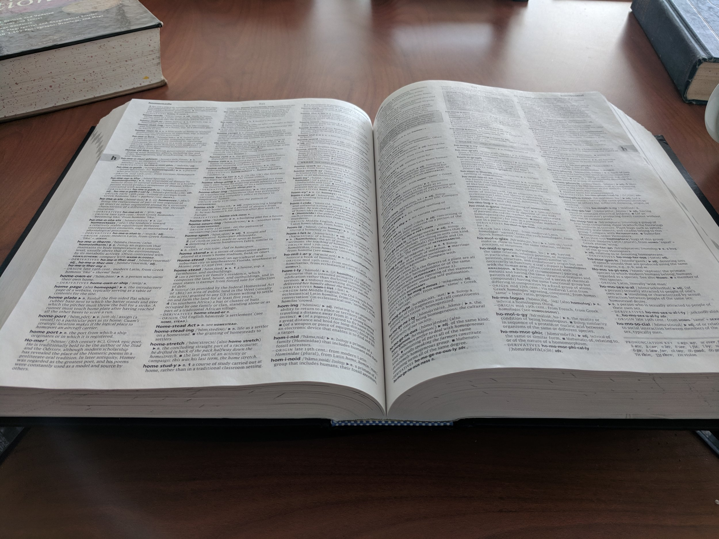 The dictionary we use at my classroom