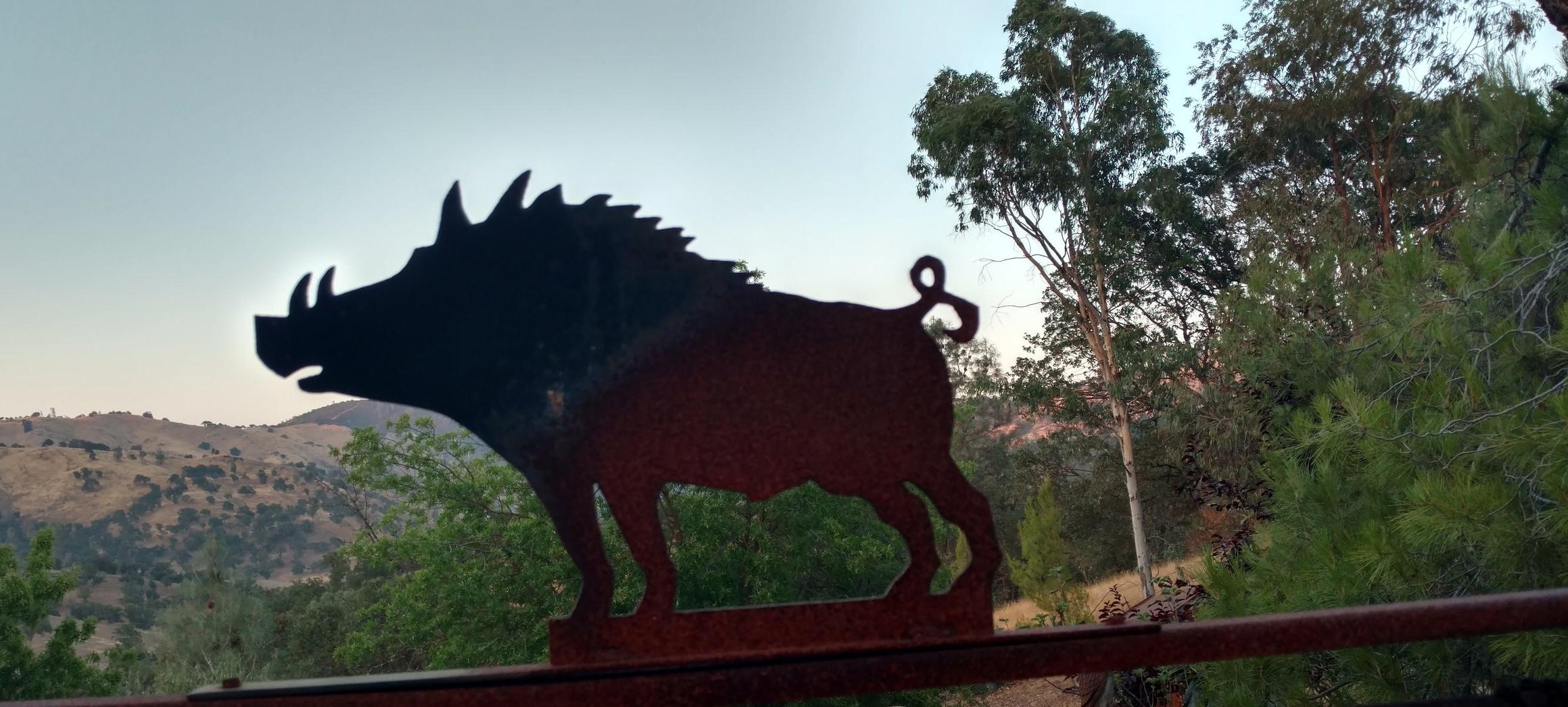 Wild Boar Recipes -