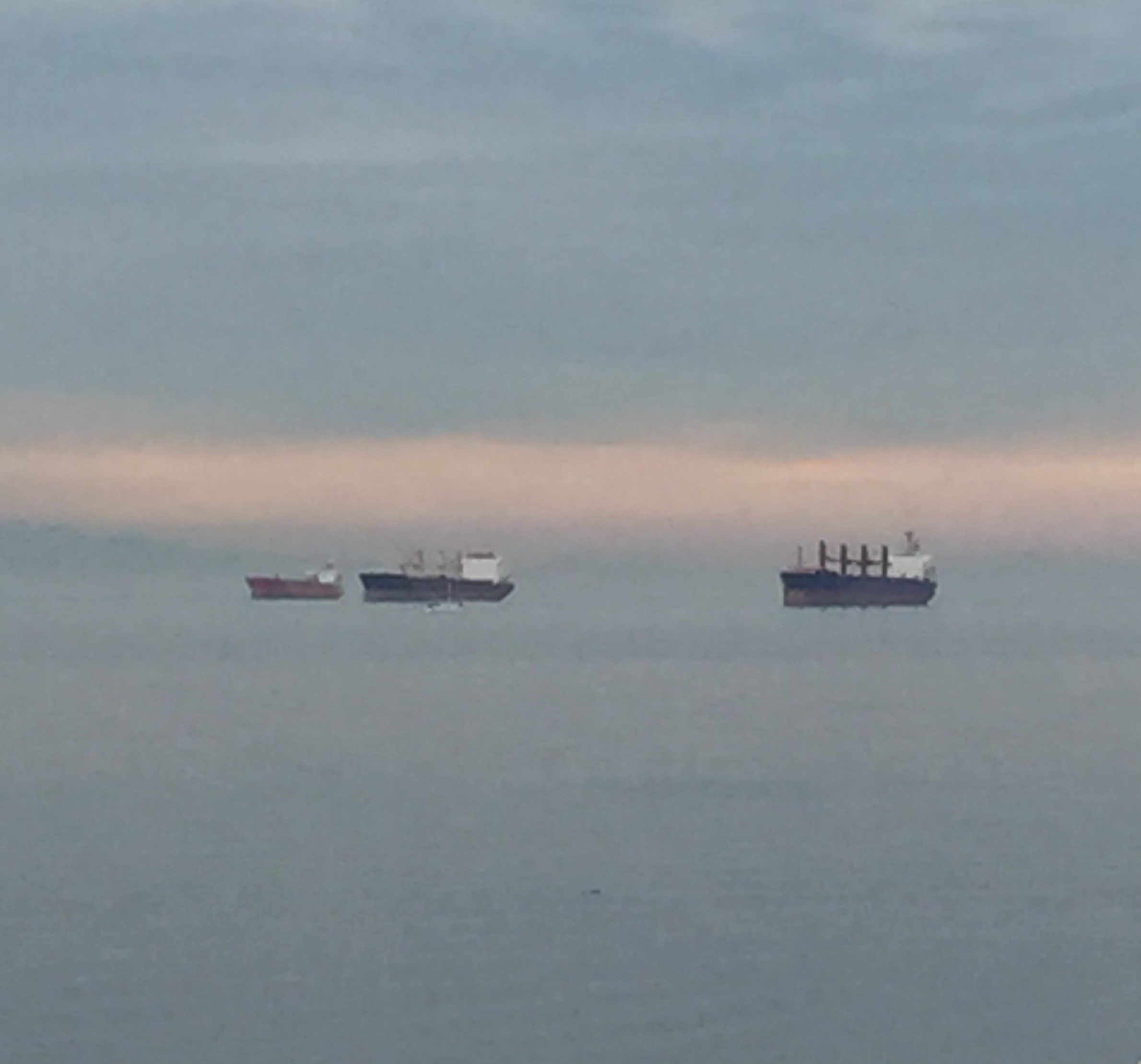 Three Ships in Vancouver Harbour, Source: Renisa Mawani