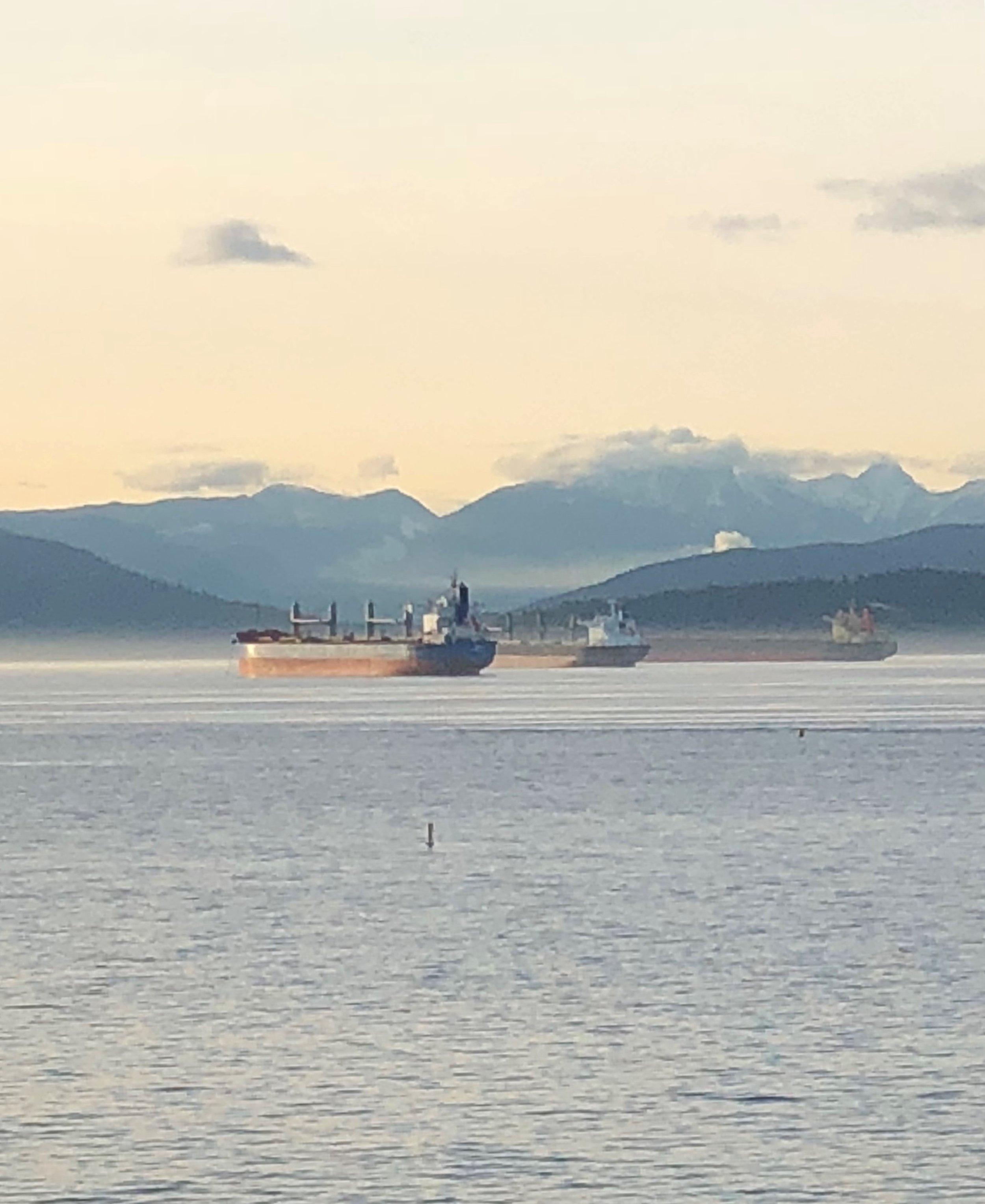 Three Ships in Burrard Inlet. Source: Renisa Mawani