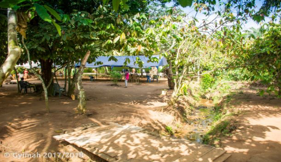 "COCOASE - Leveana Gyimah MBChB MGCP (GHES 2017-2018) Cocoase means ""under the cocoa plants,""  seen in the picture. This is a popular prayer ground. Underneath the wooden bridge is a stream, the main source of water for the camp community, believed to have healing properties. The water from the stream is used for all household activities including drinking."