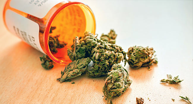 650x350_medical_marijuana_other.jpg