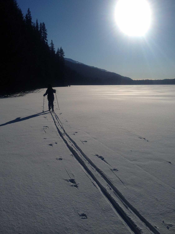 Solo-Skier-Low-Angle-Sun-Bear-Lake.jpg