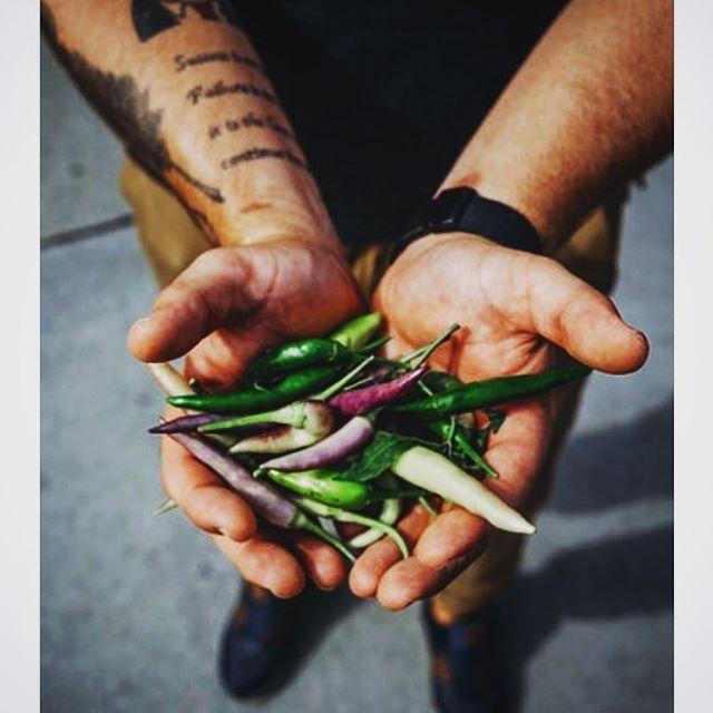 It's that time of year when we start our projects @travistymke! #popup #travistymke #mke #eater #foodandwine