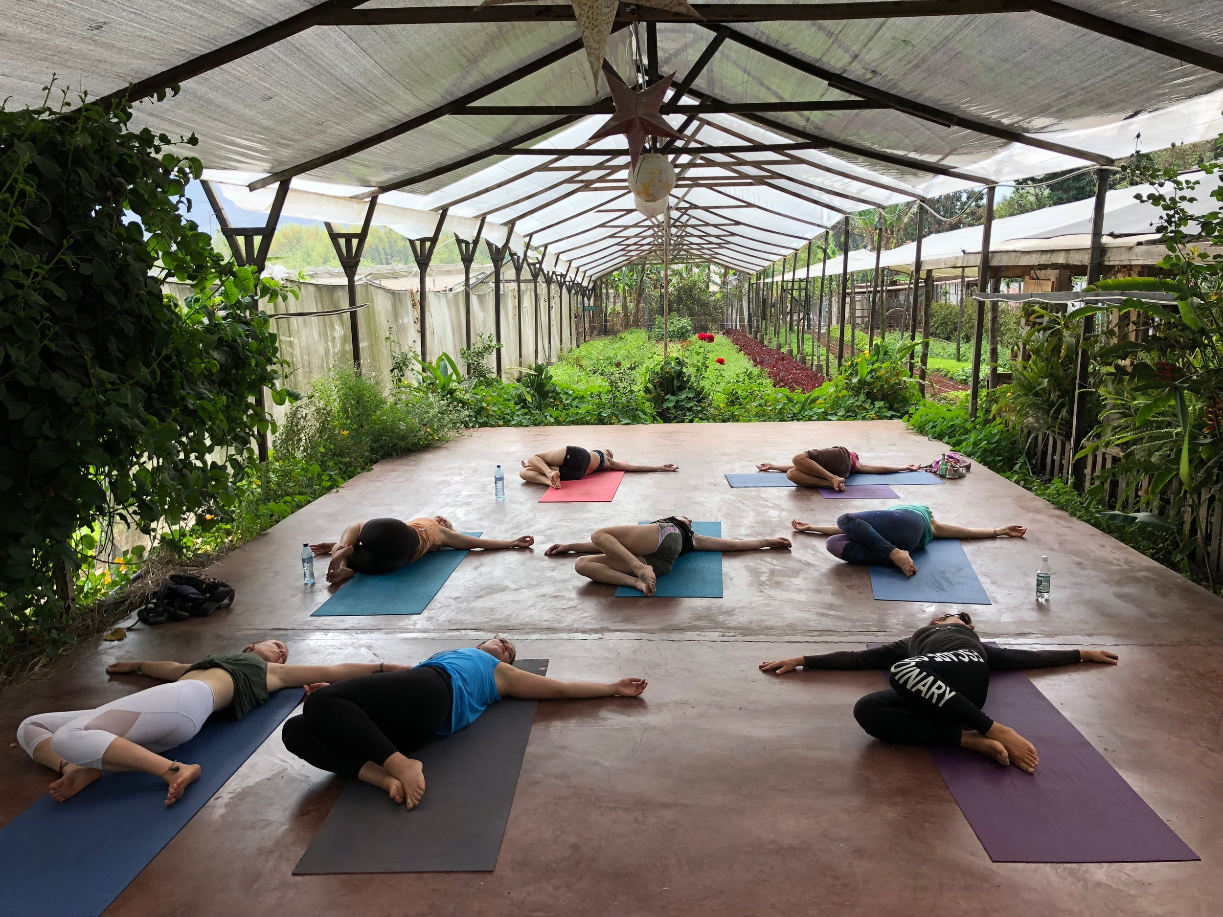 Yoga and Farm Fresh Food at Caoba Farms