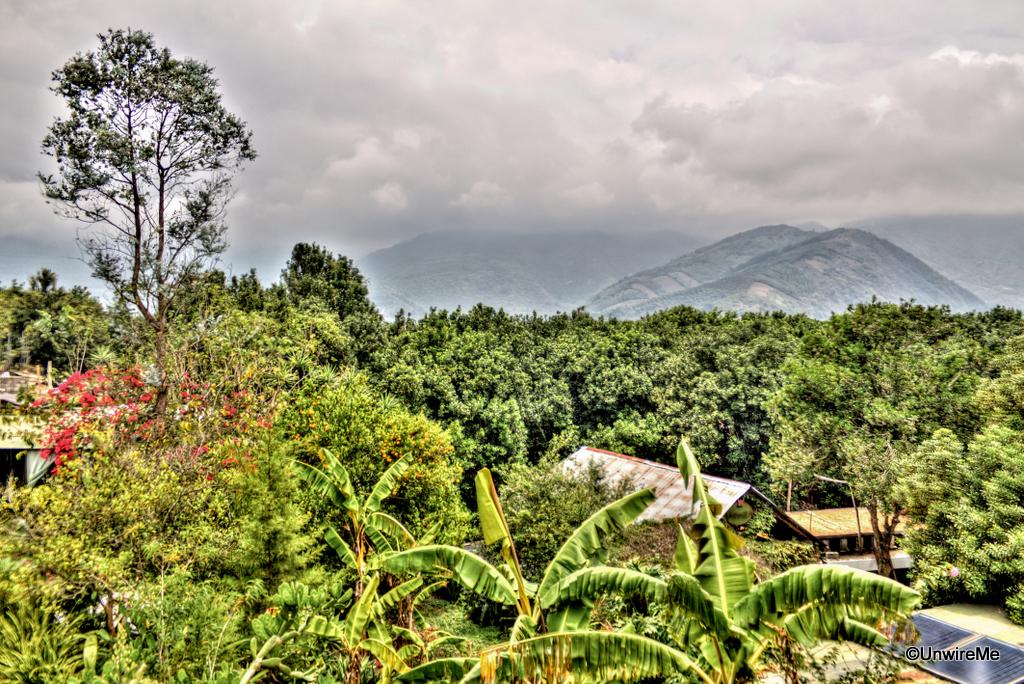 Valhalla-Macadamia-Farm-Antigua-Guatemala-3-2.jpg