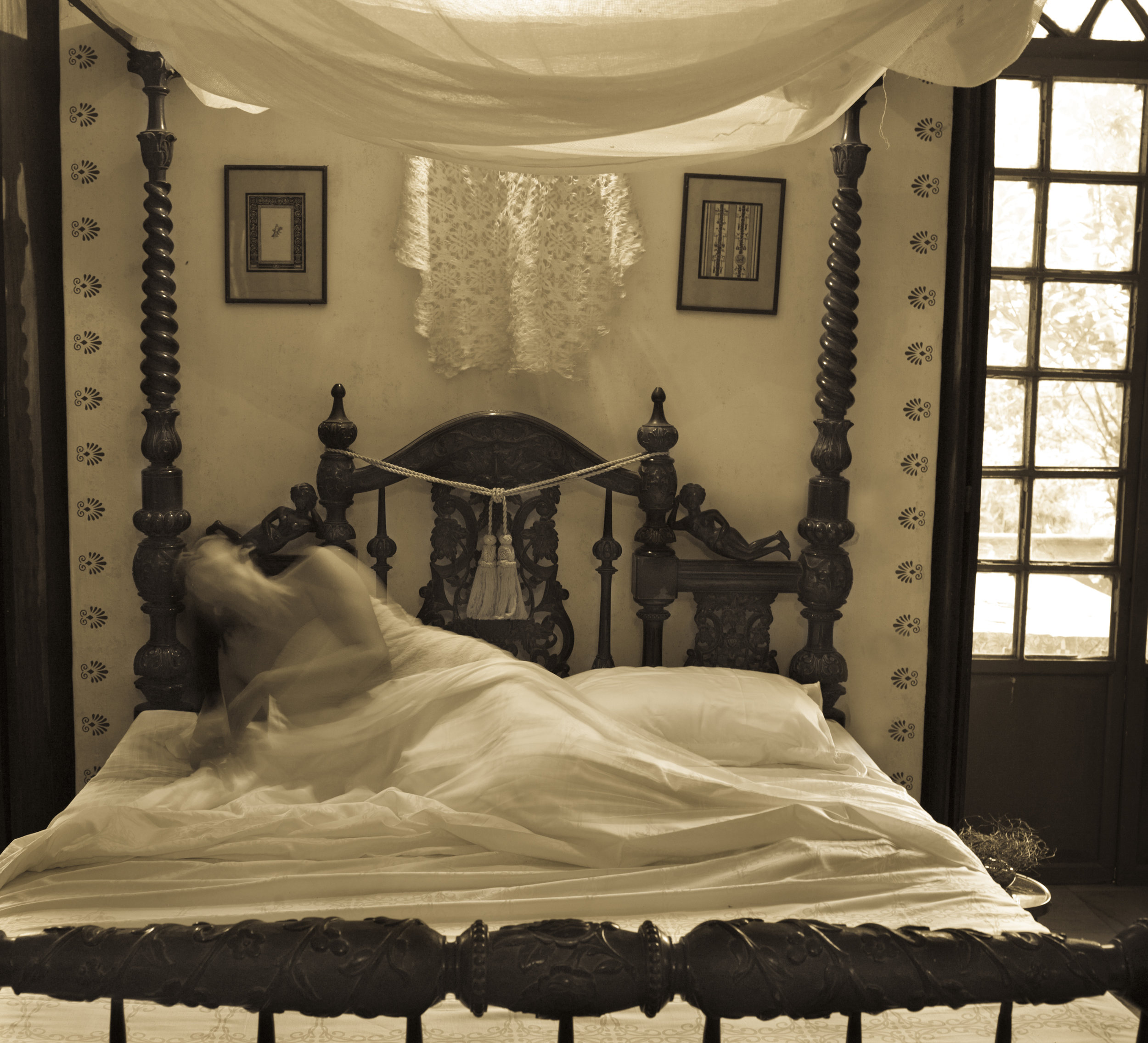 Pamela Sigh, The Lace Bed , 2012