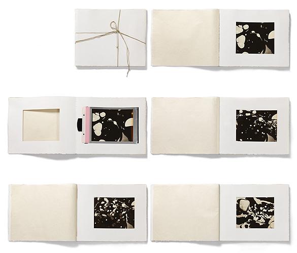 Beatrice Pediconi, Alien Artist Books , 2015