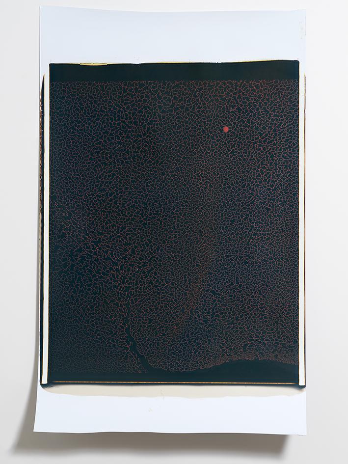 Beatrice Pediconi,  Gaea #15 , 2018. Polaroid, Unique, 20 x 24 in.