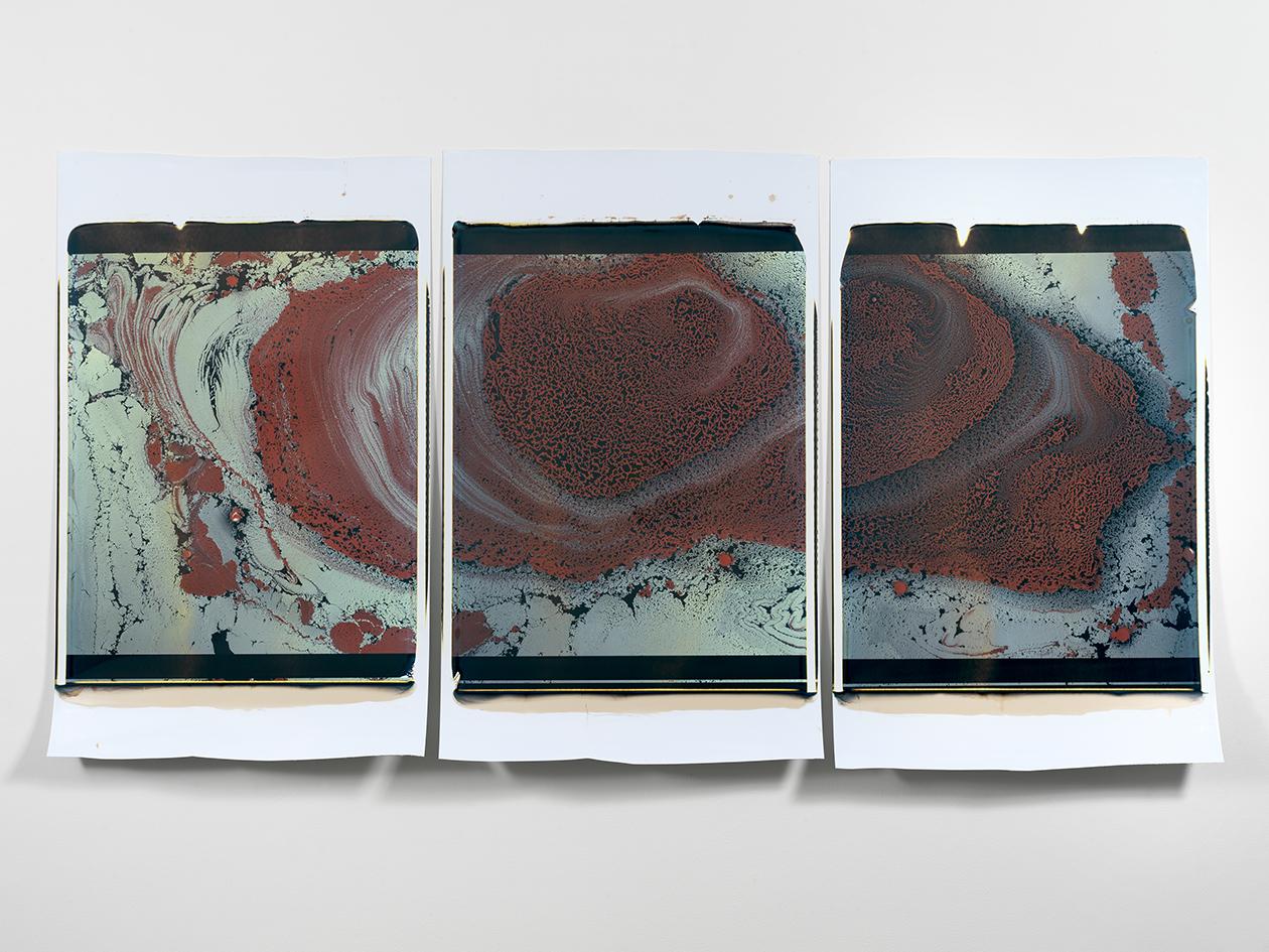 Beatrice Pediconi,  Gaea #2 , 2019. Triptych. Polaroid, Unique, 20 x 24 in. each.