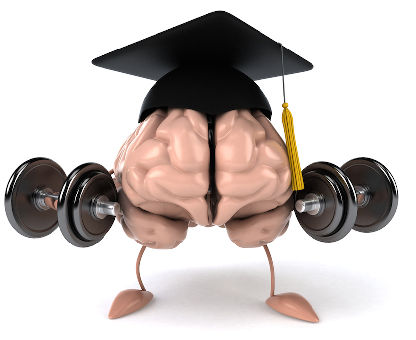 brain with cap and weights copy.jpg