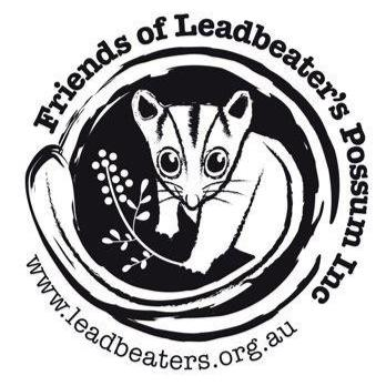 Friends of Leadbeater's Possum   Working for the Great Forest National Park to provide security for the critically endangered Leadbeater's Possum and other threatened species in the ash forests of eastern Victoria.