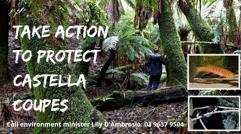 Take action to protect Castella coupes.png