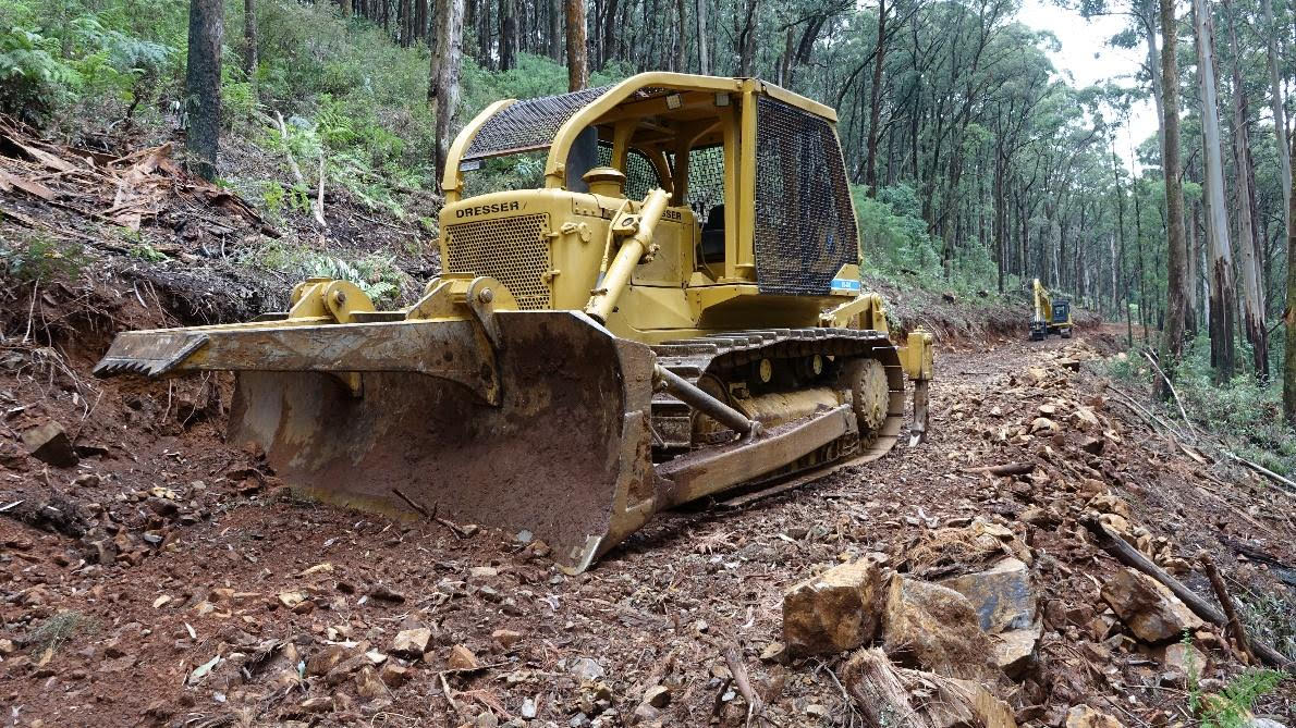 Bulldozers have already moved in to the Castella logging coupe. Photo credit: Citizen Scientist