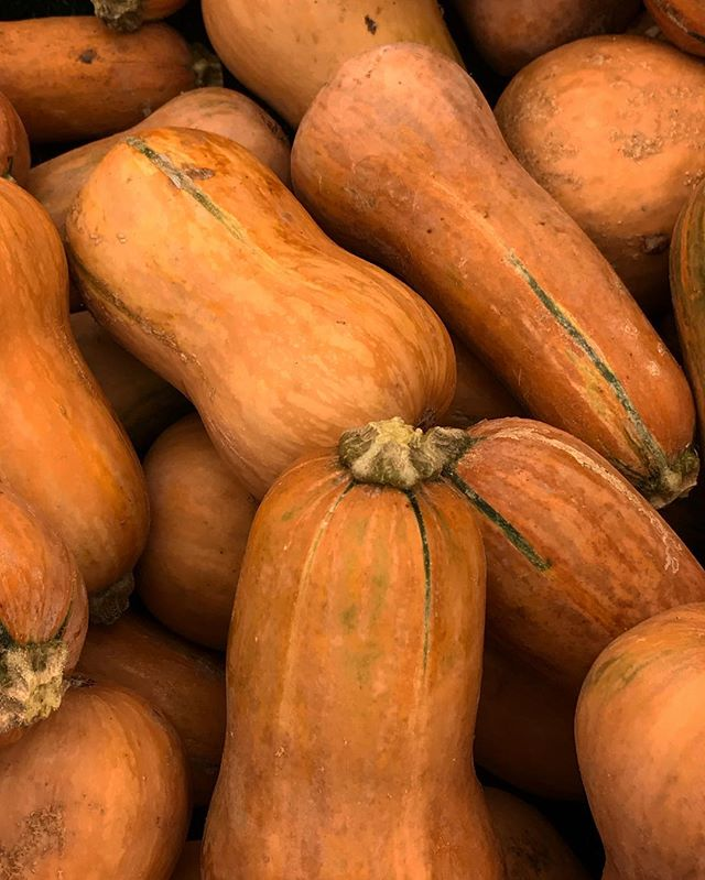 Getting ready for all things fall as the #farmersmarket transitions to #autmn #ingredents like #butternutsquash from @weiserfamilyfarms @smfms