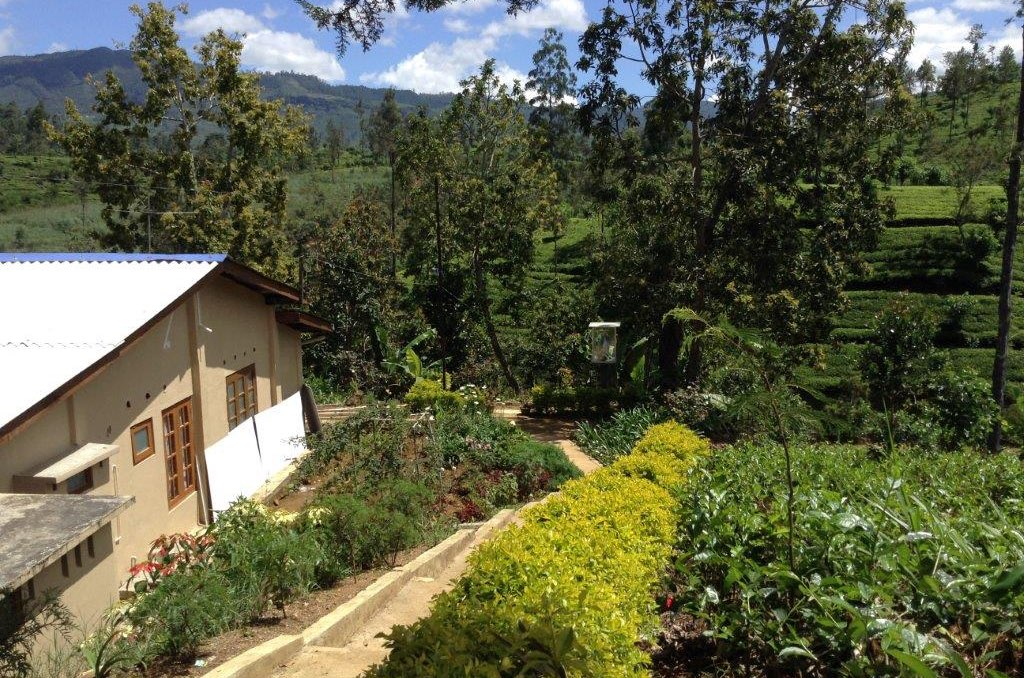 Mattakelle Convent and Tea Plantations