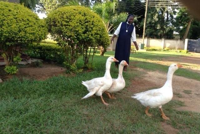 Grace & Compassion Convent, Mundika