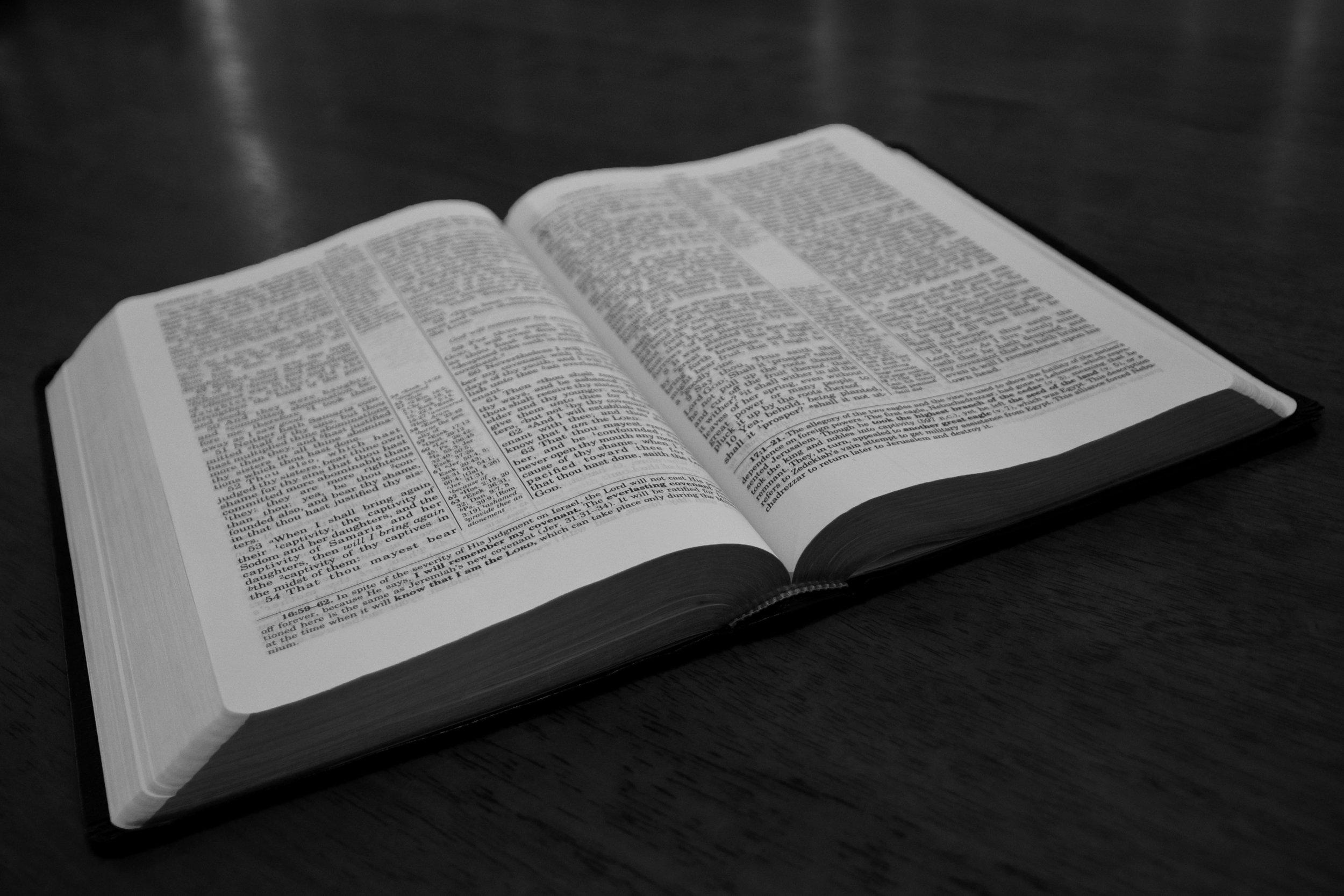 open bible 1 b&w.jpg