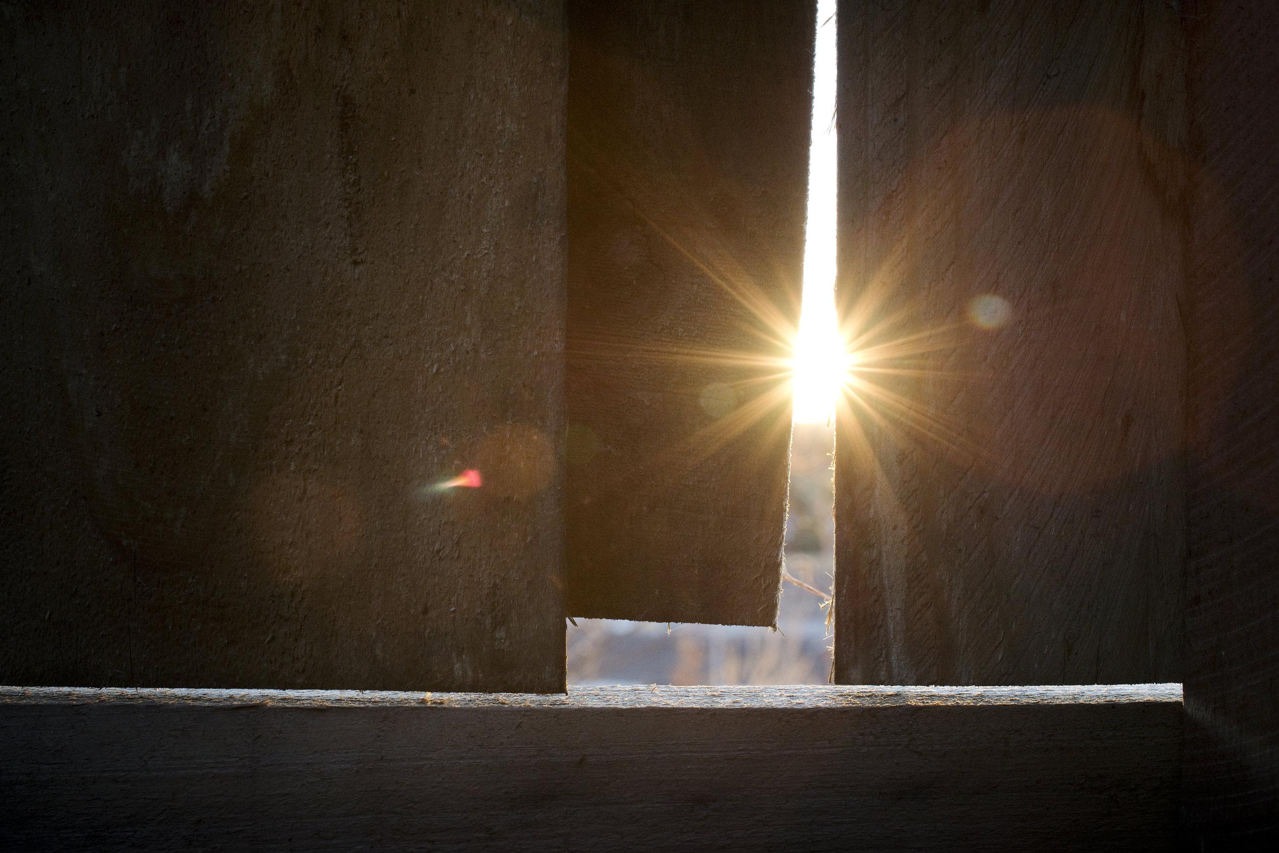 light through fence.jpg