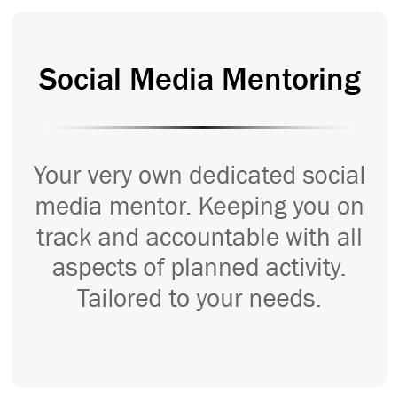 social media mentoring.png