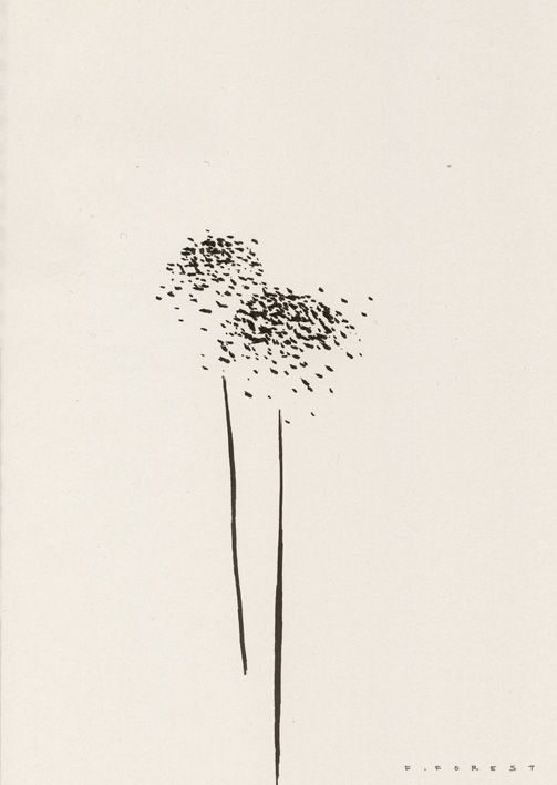 FForest_Drawing_Flowers#14.jpg
