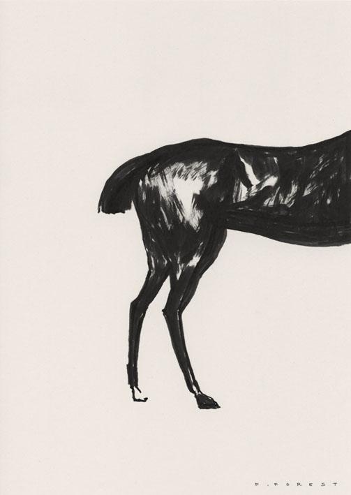 FForest_Drawing_Horse2.jpg