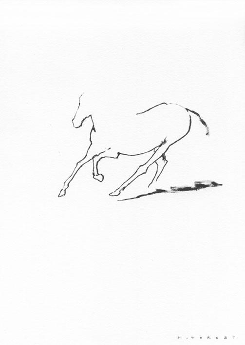 FForest_Drawing_Horse4.jpg